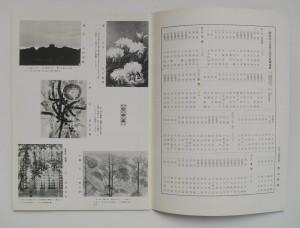 作品の図版のページ